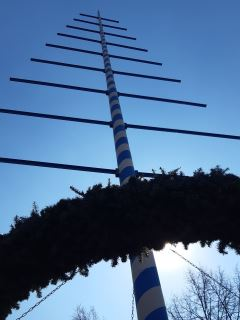 TV Schweinheim Maifest - Bild: Maibaum ohne Schilder