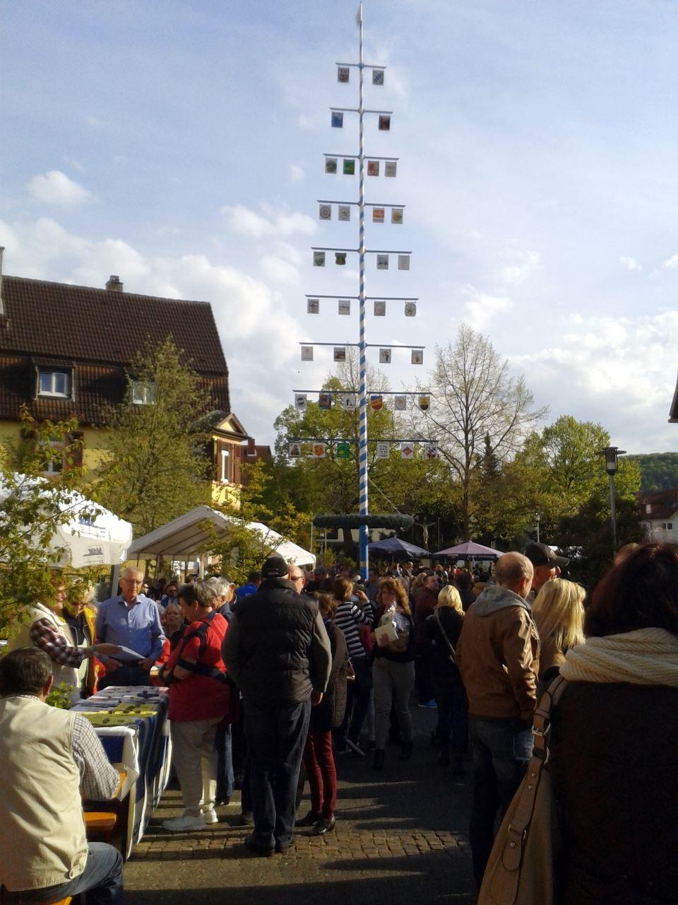 TV Schweinheim Maifest 2016