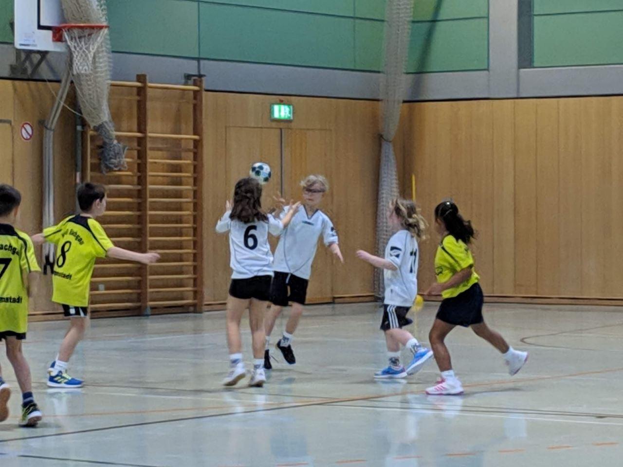 TV Schweinheim - Handball Minis